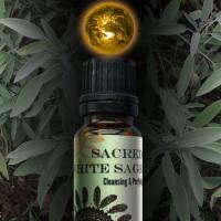Sacred White Sage World Magic Oil