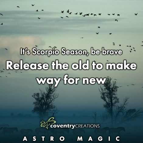It's Scorpio Season, be brave